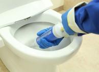 尿石などを除去